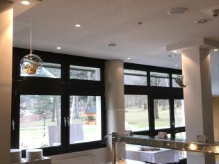 große Fenster und eine Ausrichtung nach SO sind ideale Standorte für Tillandsien